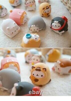 Molang Lapin Cat Costume #5 Bunny Blind Box Cute Art Toy Figurine Poupée 1pc Ou Set